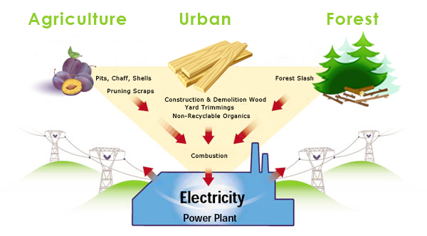 Renewable Energy : California Biomass Energy Alliance