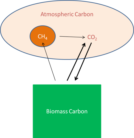 Biomass to Co2 infographic